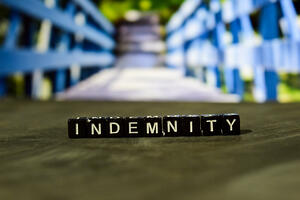 Indemnity Clause & Liability Protection